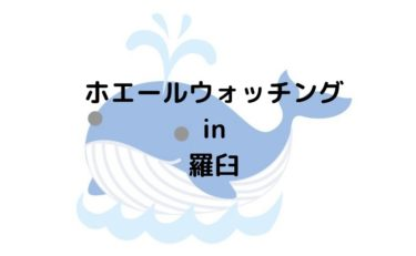 【ホエールウォッチング】北海道羅臼で体験するべき観光クルージング!